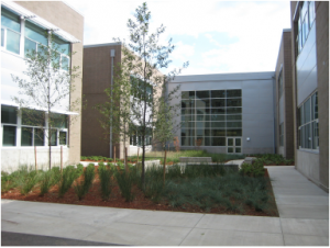 Cornerstone MGI South Meadows Middle School Exterior Courtyard